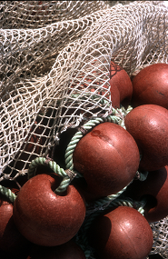 COLOURBOX527799_fishing_net_small_size